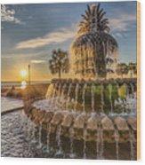 Sunrise At Pineapple Fountain Wood Print