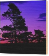 Sunrise At Point Pleasant Park Wood Print