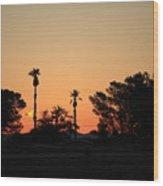 Sunrise At The Oasis Wood Print