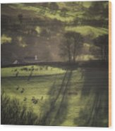 Sunrise At The Sheep Farm Wood Print