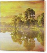 Sunrise At Trojan Park In Rainier Oregon Wood Print