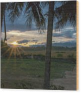 Sunrise Between The Palms Wood Print