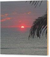 Sunrise Florida Wood Print