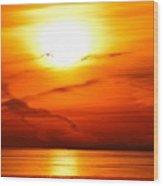 Sunrise Flying Two Wood Print
