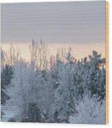 Sunrise Glos Behind Trees Frozen Trees Wood Print