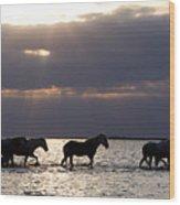 Sunrise Horses Wood Print