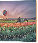 Sunrise, Hot Air Balloon And Moon Over The Tulip Field Wood Print