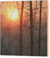 Sunrise In A Foggy Wood Wood Print