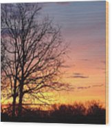 Sunrise In Illinois Wood Print