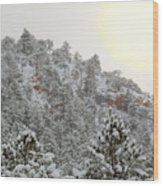 Sunrise In Snowstorm In The Pike National Forest Wood Print