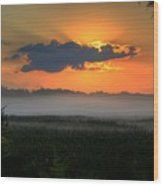 Sunrise In The Swamp-3 Wood Print