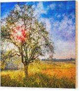 Sunrise Meadow Wood Print