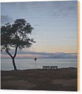Sunrise, Moonfall Wood Print