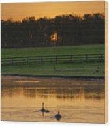 Sunrise On A Gettysburg Duck Pond Wood Print