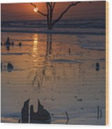 Sunrise On Boneyard Beach Wood Print