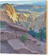 Sunrise On Burr Trail Switchbacks Wood Print