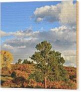 Sunrise On County Road 58 Wood Print