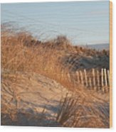 Sunrise On The Dunes Wood Print