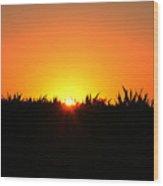 Sunrise Over Corn Field Wood Print