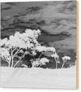 Sunrise Over Fort Salonga B W In Negative Wood Print