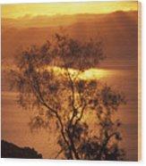 Sunrise Over Mount Nebo In Jordan Wood Print by Richard Nowitz