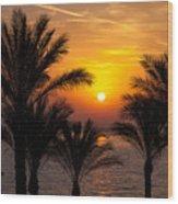 Sunrise Over The Red Sea Wood Print