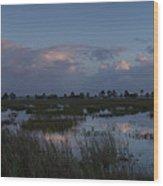 Sunrise Over The Wetlands Wood Print
