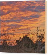 Sunrise Over The Wheat Fields Wood Print