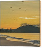 Sunrise Seascape With Mountain And Birds Wood Print