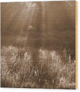 Sunrise Sepia Wood Print