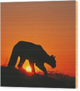 Sunrise Stalk Wood Print