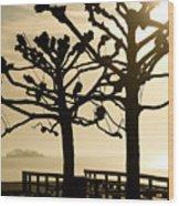 Sunrise Trees Wood Print