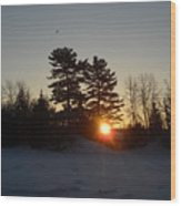 Sunrise Under Pine Tree Wood Print