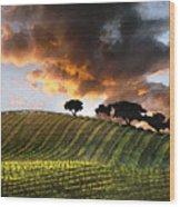 Sunrise Vineyard Wood Print