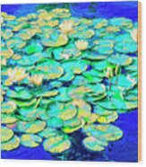 Sunrise Waterlilies Wood Print