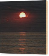 Sunrise Window Path Delray Beach Florida Wood Print