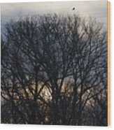Sunrise With Bird Wood Print