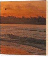 Sunrise With Seagull Wood Print