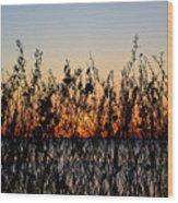 Sunrise2 Wood Print