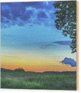 Sunset And Flowers Wood Print