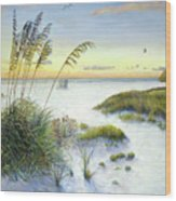 Sunset And Sea Oats At Siesta Key Public Beach Wood Print