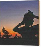 Sunset And Shadows Wood Print