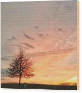 Sunset And Tree Wood Print