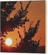 Sunset At Budapest Wood Print