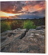 Sunset At Fontainebleau Wood Print