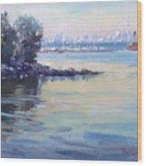 Sunset At Lake Ontario  Wood Print