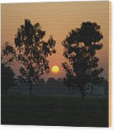 Sunset At Lumbini Wood Print