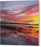 Sunset At Myakka River State Park, Florida Wood Print