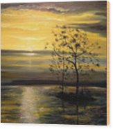 Sunset At Oceanside Wood Print