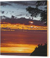 Sunset At Oswald West Wood Print